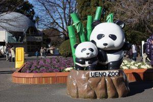 シャンシャンの人気が絶えない「上野動物園」
